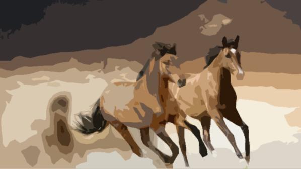 paarden.png