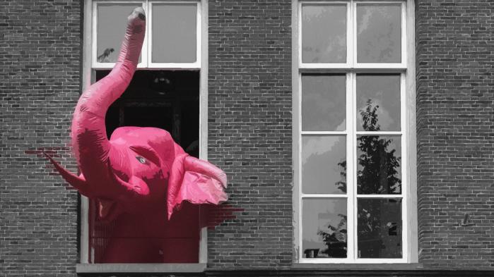 roze olifant.png